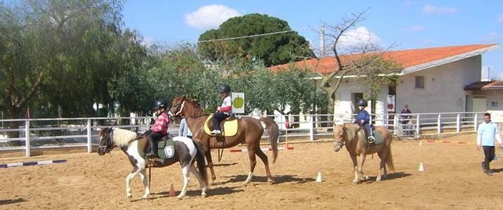 Alcune terapie con i cavalli